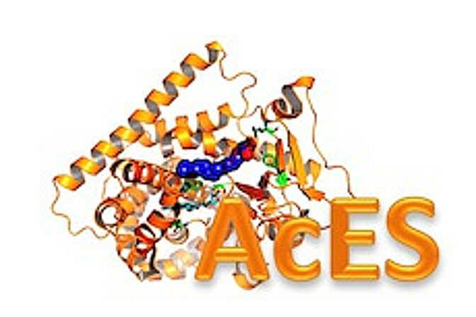 Logo of the AcES-Conference organized by Professor Schwaneberg